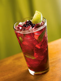 Wild Maine Blueberry Mojito